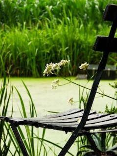 sentado junto al río