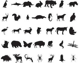 siluetas de los animales