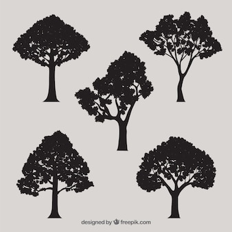 Siluetas del árbol