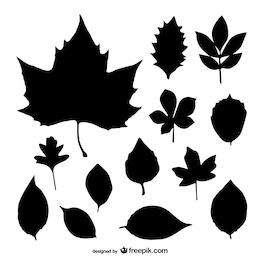 Siluetas negras de hojas
