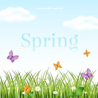 Rótulo de primavera
