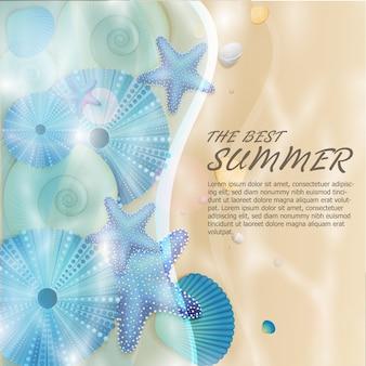 Vector de fondo de verano y vida marina