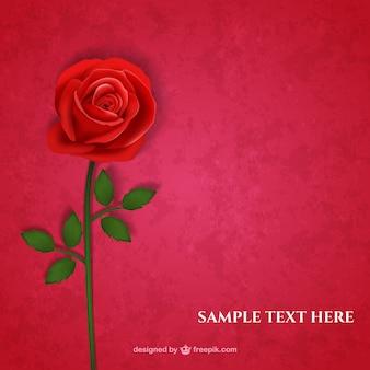 Tarjeta Rosa roja