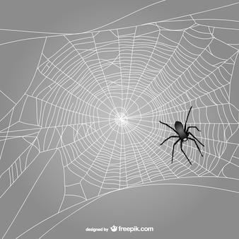 Tela de araña con araña negra