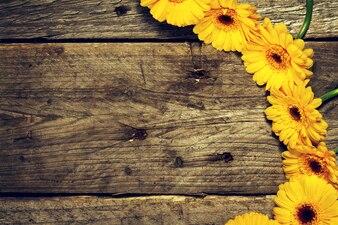 Temporada de jardín de flores fondo frontera madera
