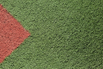 Textura de hierba verde y roja