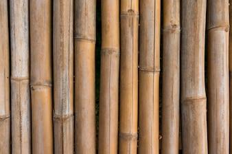 Textura de valla de bambú con fondo de patrones naturales