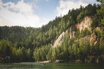 El bosque junto al río