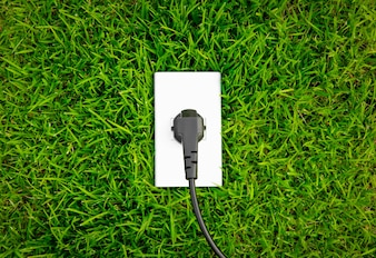 Toma el concepto de energía en la hierba verde fresca de primavera