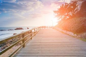Tranquilidad horizonte roca luz el mar verano
