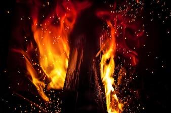 Tronco en llamas