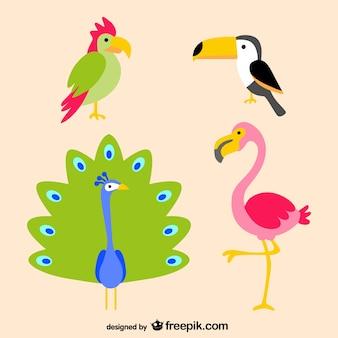 Las aves tropicales