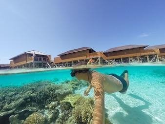 Tubo nadando en las profundidades de los animales maldivas