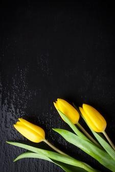 Tulipanes amarillos en un fondo negro