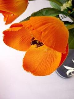 tulipanes de color naranja, hojas