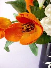 tulipanes de color naranja, ornamento