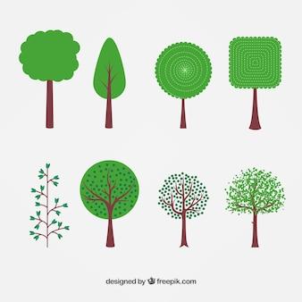 Variedad de árboles de primavera