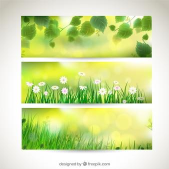 Variedad de banners primaverales