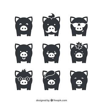 Variedad de cerdos iconos