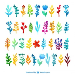 Variedad de hojas de acuarela