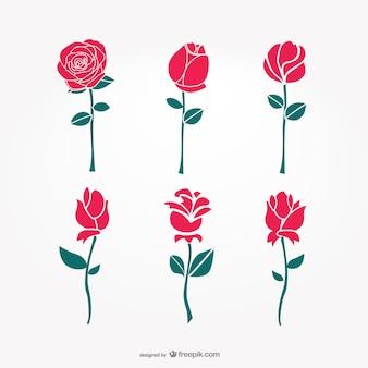 Flores artísticas minimalistas