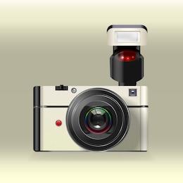 Vector cámara polaroid