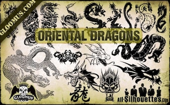 vector de dragones orientales