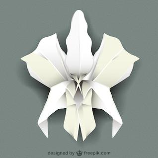 Vector orquídea blanca