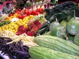 verduras frescas, tomates, greysquash