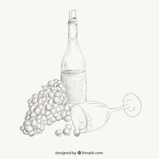 Vino y uvas ilustración