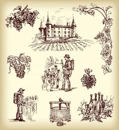 vinos pintada a mano elementos de vectores