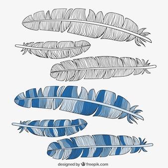 Conjunto de plumas de la vendimia