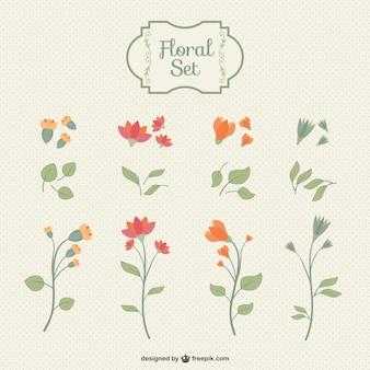 Pack floral vintage