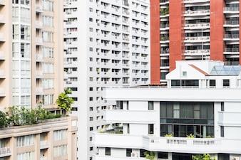 Vista de edificios con plantas