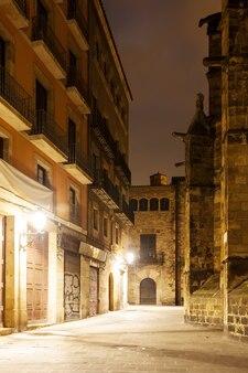 Vista nocturna del Barrio Gótico. Barcelona