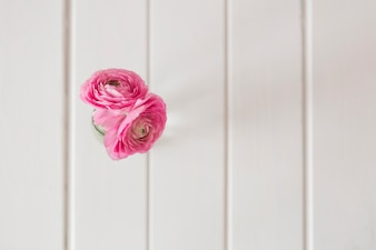 Vista superior de superficie de madera con dos flores rosas