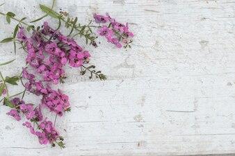 Vista superior de superficie de madera dañada con flores bonitas