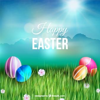 Señal de madera y huevos de Pascua