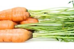 zanahoria, comida