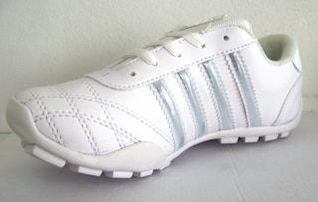 zapato del deporte, la moda