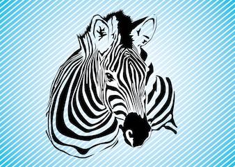 Zebra Gráficos