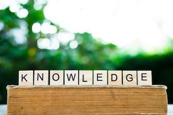 Alfabeto di conoscenza in legno