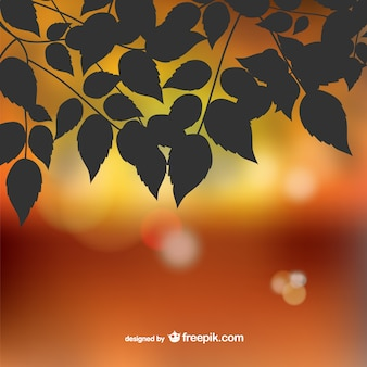 Autumn leaves silhouette sfondo bokeh
