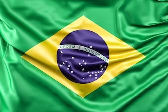 Bandiera del Brasile
