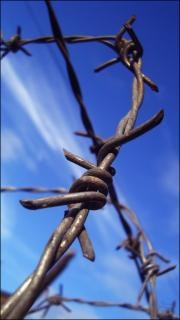 Barbwire recinzione