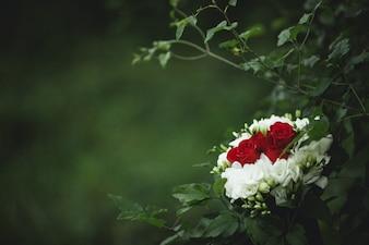 Bouquet di nozze con i fogli intorno