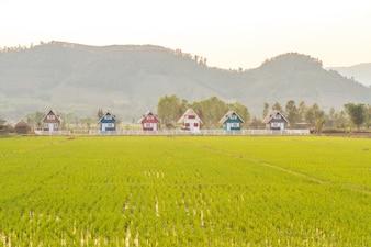 Casa nel paese
