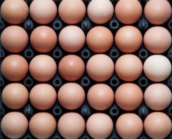 Close up di uova in contenitore di plastica nera, top shot