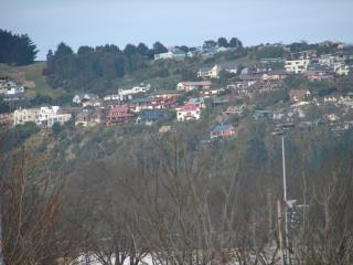 Colline di Dunedin