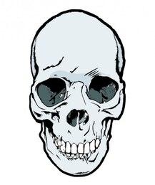 Cranio frontale primo piano